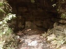 Caverna com escudos da tartaruga e ferramentas da arqueologia fotos de stock