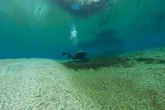 Caverna d'immersione U.S.A. di Florida Jackson Blue delle caverne subacquee degli operatori subacquei Fotografia Stock Libera da Diritti