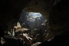 Caverna da selva foto de stock