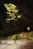 Caverna de Brasil Fotos de Stock