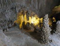 Caverna de Carlsbad Imagens de Stock