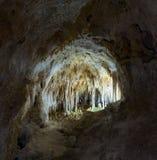 Caverna de Carlsbad Fotos de Stock