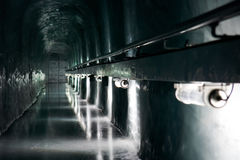 Caverna de gelo Fotos de Stock