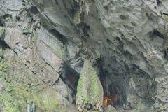 A caverna de Huong Tich do pagode do perfume em Chua Huong vietnamiano, Hanoi fotos de stock royalty free