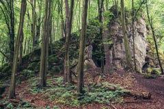 Caverna de Ostreznik no Polônia Fotos de Stock Royalty Free