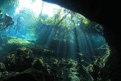 Caverna del cenote dell'entrata Fotografie Stock Libere da Diritti