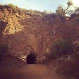 Caverna del pipistrello Fotografia Stock