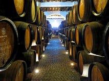 Caverna del vino di Oporto Fotografia Stock Libera da Diritti
