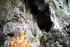 Caverna di morfologia carsica, il palazzo del drago in Guizhou, porcellana immagini stock