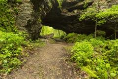 Caverna do arco na mola Fotos de Stock Royalty Free
