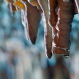 Caverna do stalagmite do Stalactite fotos de stock