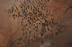 Caverna dos bastões Fotografia de Stock Royalty Free