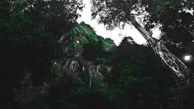 Caverna dos cheras de Gua fotografia de stock