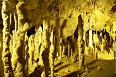 A CAVERNA dos URSOS situada nas montanhas ocidentais de Apuseni fotos de stock royalty free