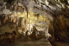 Caverna Eslovênia de Postojna Fotos de Stock Royalty Free