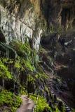 Caverna feericamente perto de Kuching, Sarawak fotos de stock