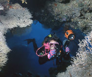 Caverna feita sob encomenda, Solomons Foto de Stock Royalty Free