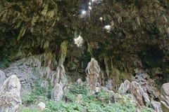 Caverna grande con agujeros y un hombre Polinesia francesa Imágenes de archivo libres de regalías