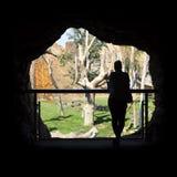 Caverna no jardim zoológico fotos de stock royalty free