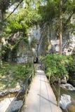 A caverna, o dossel e a floresta do diabo em Merida State imagens de stock royalty free