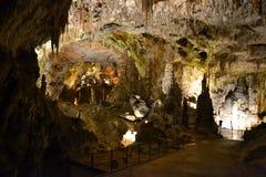 Caverna Postojna, Eslovênia fotografia de stock royalty free