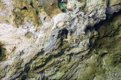 Caverna Prachuap Khiri Khan Thailand di Phraya Nakhon del fondo di struttura della pietra o della roccia fotografia stock libera da diritti