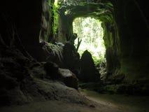 Caverna selvaggia della giungla Fotografie Stock Libere da Diritti