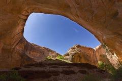 Caverna vicino a Jacob Hamblin Arch in coyote Gulch fotografia stock libera da diritti