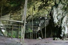 Cavernas rápidas do ninho Foto de Stock Royalty Free