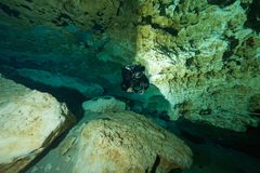 Cavernas subaquáticas Ginnie Springs Florida de mergulho EUA dos mergulhadores fotografia de stock