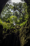 Caverne, Bornéo Image stock