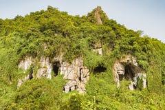 Caverne dal lato della montagna nel Vietnam Immagine Stock Libera da Diritti