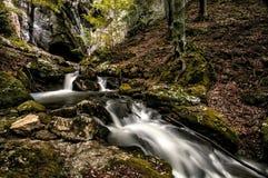 Caverne de Cioclovina Photographie stock libre de droits