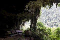 Caverne de Niah Images libres de droits