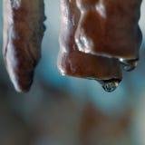 Caverne de stalagmite de stalactite Images libres de droits