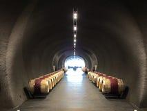 Caverne de vin Photographie stock
