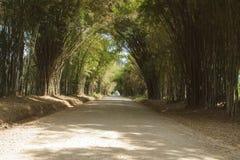 Caverne en bambou Images libres de droits
