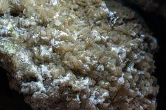 Caverne en pierre ? l'int?rieur formations en cristal antiques, pierres, géologie, l'étude des roches du sol village Kryvche l'uk photos stock