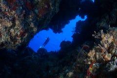 Caverne et plongeur autonome Photos stock