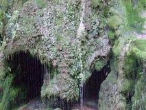 Caverne pleurante photographie stock