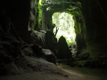 Caverne sauvage de jungle Photos libres de droits