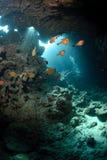Caverne sous-marine et lumière du soleil Photo stock