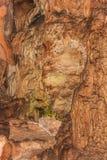Caverne souterraine avec des stalactites et des stalagmites image libre de droits
