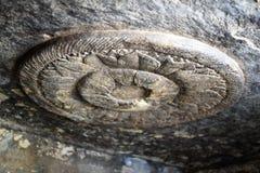 Cavernes d'Udayagiri, Vidisha, Madhya Pradesh photo libre de droits