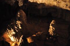 Cavernes de Waitomo Image stock