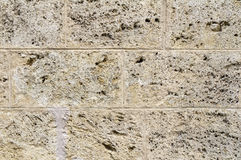 Cavernous stone wall detail Stock Photography