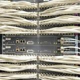 Cavi della rete connessi all'interruttore Immagini Stock