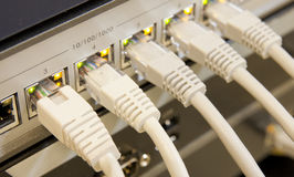 Cavi della rete connessi all'interruttore Fotografie Stock Libere da Diritti