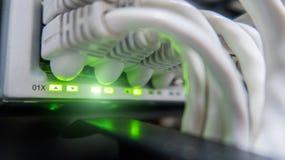 Cavi della rete connessi all'interruttore Hub della rete Immagini Stock