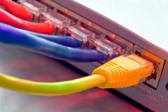 Cavi della rete di calcolatore di Ethernet sul router Fotografie Stock